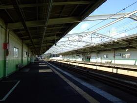 Ichikawaoono1_3