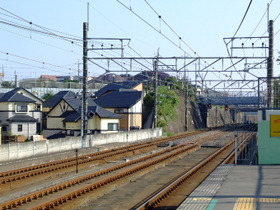 Ichikawaoono2_4