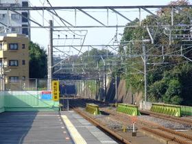 Ichikawaoono3_2