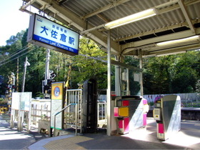 Oosakura6