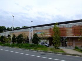 Gnaratomigaoka1