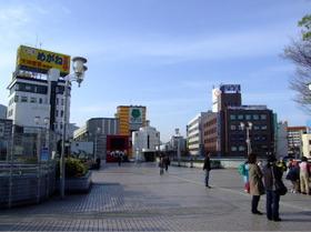 Kurosaki8