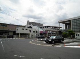 Ksakura3_2