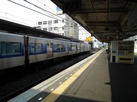 Yachiyodai10