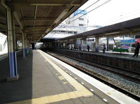 Yachiyodai11