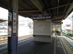 Yachiyodai8