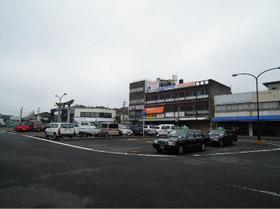 Kameyama4