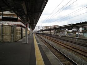 Arakawaoki3