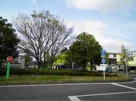 Kohoku6
