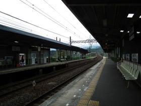 Sakakibara2