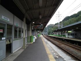 Sakakibara3