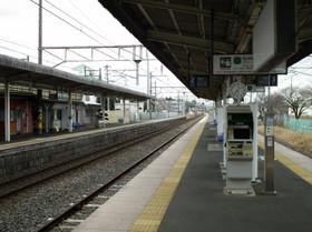 Hatori2