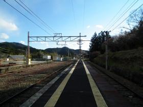 Mikawaoono2