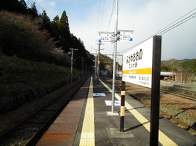 Mikawaoono3