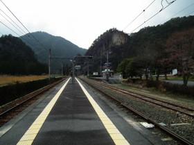 Mikawamakihara2