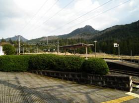 Mikawamakihara6