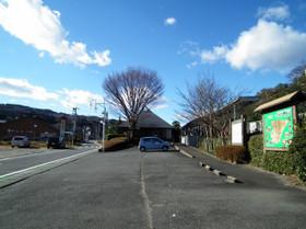 Onogamionsen2