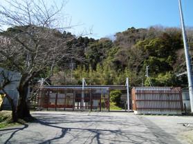 Torami8