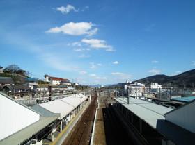 Hasimoto5