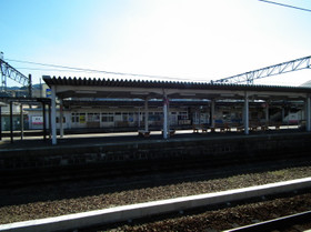 Hasimoto8