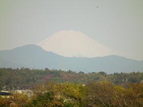 Bentenjima6