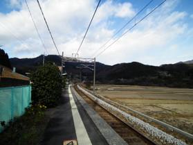 Ubasima1