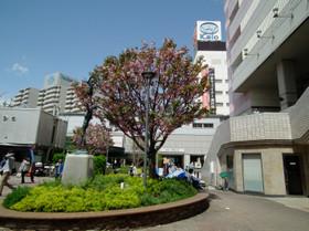 Seiseki105