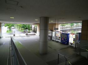 Midorichuo5