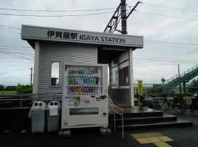 Igaya5