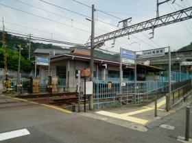 Hiyodorigoe3