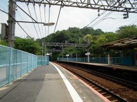 Hiyodorigoe5