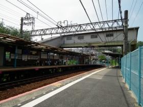 Hiyodorigoe6