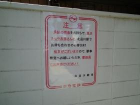 Kitasinagawa6