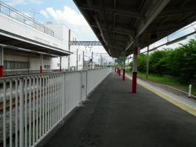 Wasinomiya2